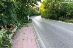 Bari, operazioni di pulizia e disserbo sulla strada Torre a Mare-Noicattaro