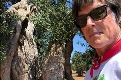 "Ronn Moss a Fasano, il Ridge di ""Beautiful"" gira un film in Puglia"