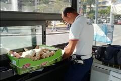 Vendeva abusivamente pane in piazza Umberto, maxi multa da 5mila euro