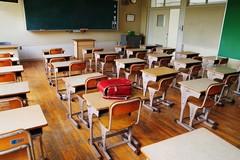 """Esami di Stato, classi """"pollaio"""" e graduatorie docenti, cosa succederà a scuola?"""