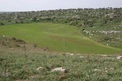 Bari, passeggiata alla scoperta della Lama con la RCU Picone-Poggiofranco