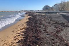 Il waterfront di San Girolamo dopo la burrasca, Galasso: «Niente danni, dal mare arriva la sabbia»