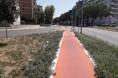 Pista ciclabile in via Caldarola, Galasso: «Nuovo progetto per il prolungamento»