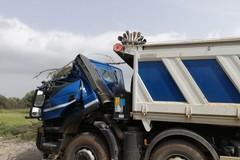 Forte vento su Bari, albero cade su un camion in via Trisorio Liuzzi