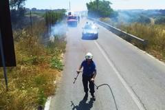 Continua a bruciare la campagna di Bari, le fiamme lambiscono la strada