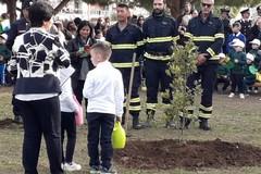 """Bari, i piccoli della Perone piantano una quercia per """"tutelare la terra"""""""