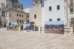 Bari, la mostra Puglia Frames of Mind sulla muraglia resterà aperta fino al 31 agosto