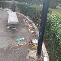 Degrado e sporcizia in piazza Umberto, intervento straordinario di Amiu