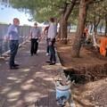 Continuano i lavori per la nuova illuminazione a Bari, ora tocca al parco a Japigia