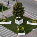 Bari, torna Primavera Mediterranea. Davanti al Petruzzelli e in via Argiro arriva il verde
