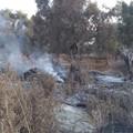 Incendi nelle campagne del Municipio IV, al posto dei rifiuti solo cenere