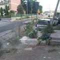Quartierino, dopo le proteste Amiu Puglia provvede al diserbo