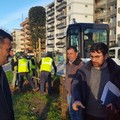 Via Caldarola, iniziata la piantumazione di 115 nuovi alberi. Lavori da 90mila euro