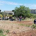 Bari, i malati di Alzheimer e non solo potranno passeggiare all'Orto Domingo