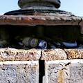 Lungomare Imperatore Augusto, un lampione usato come cestino dei rifiuti