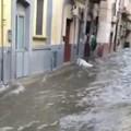 Bufera di pioggia e grandine su Bari e provincia, allagamenti a Carbonara