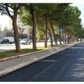 Japigia, completati i lavori per il nuovo asfalto in via Caldarola e via Marzabotto