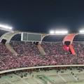 SSC Bari, ecco i mini abbonamenti. Tre partite al San Nicola a prezzo scontato