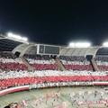 Reggina-Bari, settore ospiti sold out per il big match