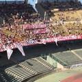 Serie B, l'Ascoli conquista la salvezza segnando al '26