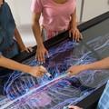 """""""Anatomage """" arriva dalla Silicon Valley per studiare il corpo umano in 3D"""