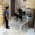 Da un incidente stradale al traffico di droga, arrestato cuoco di Mola di Bari