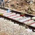 Processo Ferrotramviaria, prima di Natale i rinvii a giudizio?