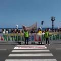Xylella, manifestazione a Bari contro il decreto Martina