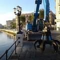 Alghe sul Lungomare di Bari, rimosse duemila tonnellate in un mese
