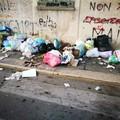 Carbonara, sacchi di rifiuti aperti e maleodoranti agli angoli delle strade