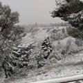 La primavera a Bari inizia con la neve sulla Murgia