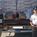 Porto di Bari, sequestrato pellet di legno con falso made in Italy