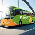 Emendamenti anti-Flixbus, Losacco e Baccadutri (PD): «Tutelare la legittima concorrenza»