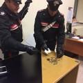 Ruba dalle offerte nella cripta di San Nicola, arrestato dipendente della Basilica