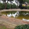 Parco Due Giugno, il laghetto è uno stagno putrido