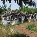 Auto, frigoriferi, computer e altro, trovata una discarica a Carbonara di Bari