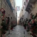 Si accendono le luminarie su Trani, candidata ad essere città europea della cultura