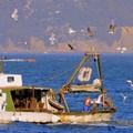 Pescatore di Mola si ferisce alla testa su un peschereccio in Sicilia