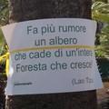 Abbracciamo gli alberi, in piazza Umberto a Bari un flash mob a tutela delle piante
