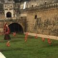 """Il cibo come opera d'arte, al Castello Svevo di Bari in mostra  """"Epifania della Terra """""""