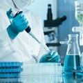 Coronavirus, la Regione: «In Puglia non c'è alcun allarme»