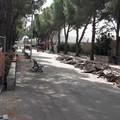 Noicattaro (Bari), via ai lavori di ampliamento del Parco Comunale