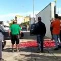 Prezzi troppo bassi per le ciliegie, agricoltori protestano gettandole in strada