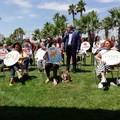 Regionali Puglia, quattordici liste sostengono la candidatura di Emiliano