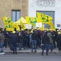 Giovani agricoltori in protesta, oltre 4 mila esclusi dal PSR