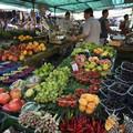 Aree mercatali, domani incontro urgente in Regione