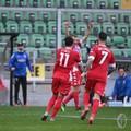 Lucca risponde a D'Ursi, Bari beffato a Palermo. Con i rosanero è solo 1-1