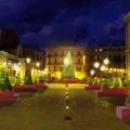 «Pagate o bruciamo l'albero di Natale» arrestati in due a Bari