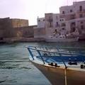 Checco Zalone a Monopoli, al porto si girano alcune scene del suo ultimo film