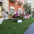 """A Bari è tempo di  """"Primavera mediterranea """". In via Argiro un grande giardino urbano"""